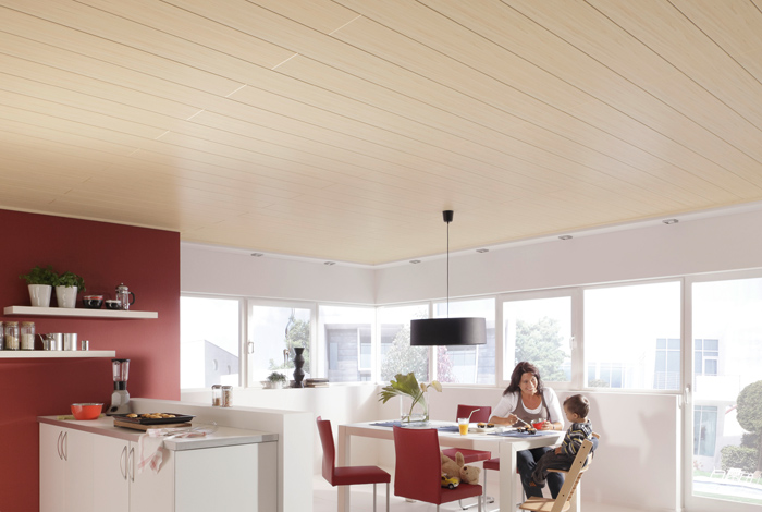 paneles meister bocado 200 250 maderplus. Black Bedroom Furniture Sets. Home Design Ideas